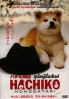 Hachiko (Japanese Movie)